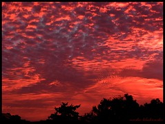 SUNRISE IN JERUSALEM -  -  (moshek70) Tags: sky cloud clouds sunrise dawn israel jerusalem        olympussp590