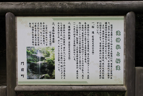 看板(桜滝)