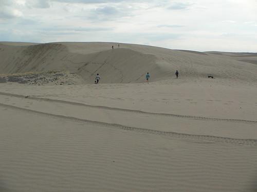 St Anthony dunes