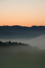 Wuppernebel (Herr Olsen) Tags: morning mist fog sunrise dawn early nebel valley kalt sonnenaufgang bergischesland morgen tal solingen brrrr frh wupper fuckingdamnedcold abgefrorenefinger