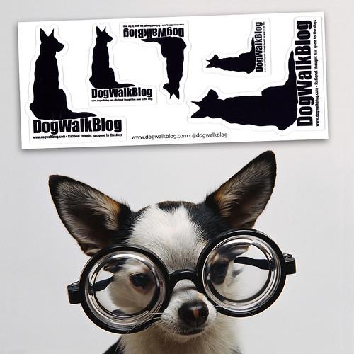DogWalkBlog.com