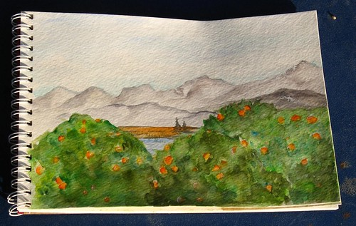 Sketch journal orangetrees01