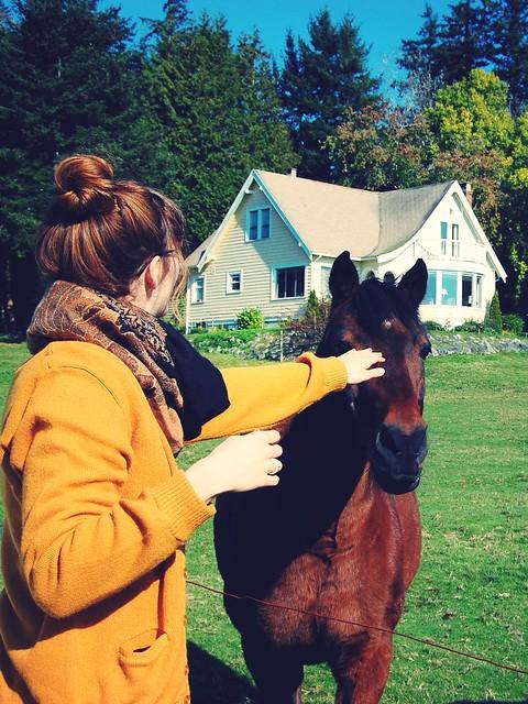 horsie.