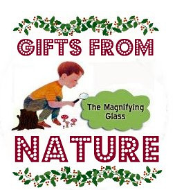 The Magnifying Glass - Gifts From Nature