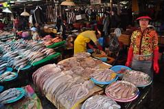 Jalgachi Seafood market 6