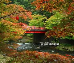 小橋流水 (( 布 )) Tags: aomori 紅葉 青森 中野紅葉山