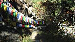 Bhutan-1742 - Copy