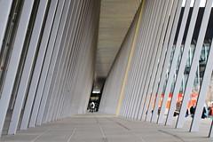 Lines aplenty (Marquisde) Tags: lines vanishingpoint dof bokeh australia melbourne 7d exhibitioncentre canonef100mmf28lisusmmacro