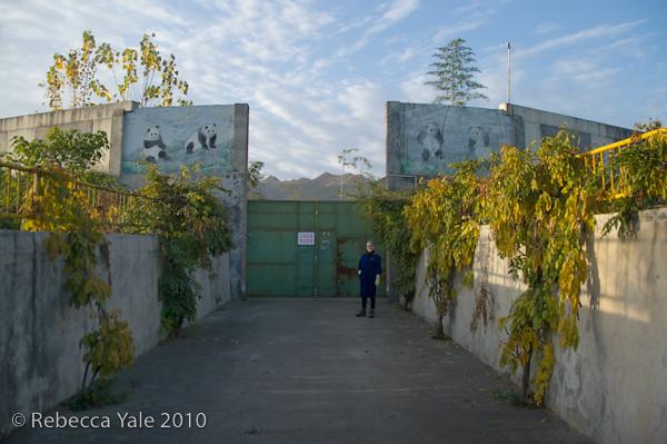 RYALE_Shaanxi_Sanctuary_31