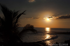 the path (Ricardo Cubias) Tags: sunset beach libertad la playa el salvador