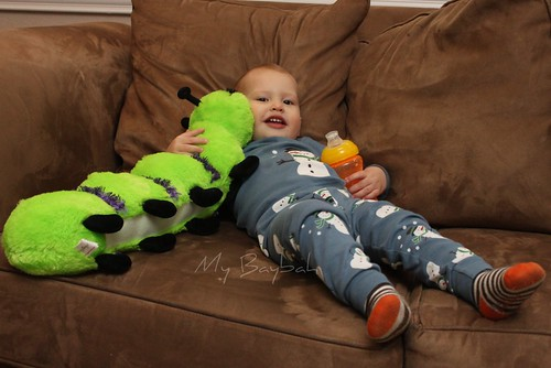 5180769109 1fcbc34b16 SnuggleBugzzz Review/Giveaway  Toddler Wonderland  CLOSED