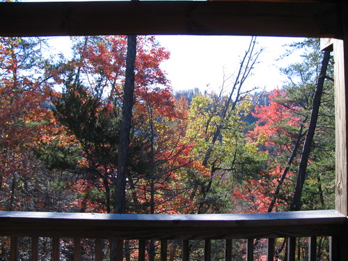 View from our Smoky Mountain Cabin