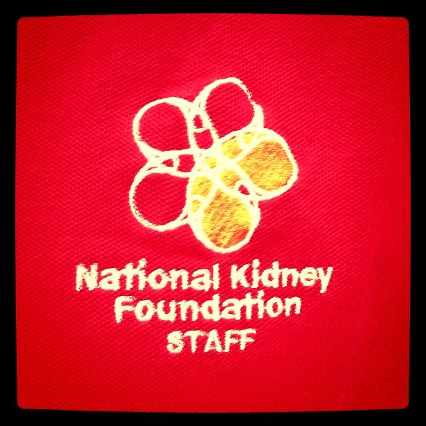 national kidney foundation essay Should all patients with chronic kidney disease take a statin february 2008 | volume 75 | number 2 | pages 118-120 dena rifkin, md division of nephrology tufts-new.