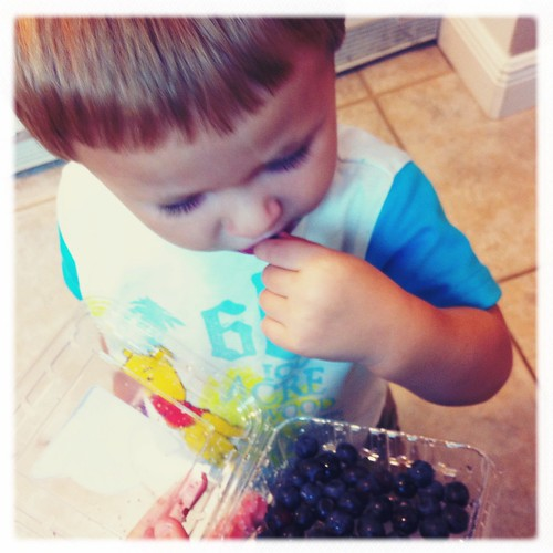 Simple Pleasures... Blueberries from the container