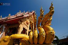 _DSC2683 (mauve55) Tags: thailand nan bwcpl nikond300 1024g 70200apo