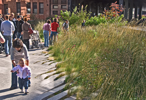 walking the High Line in New York Cit