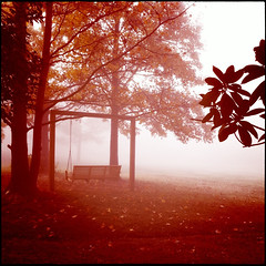 Empty swing cliche (Irene2005) Tags: fall fog backyard empty swing neighbors cliche iphone iphonecamera iphoneapp iphoneography bordercropped hipstamatic clichesaturday takenwithaniphone4