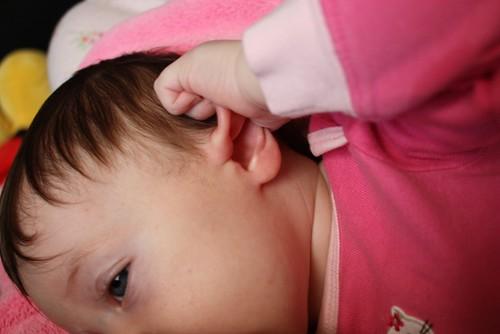 baby ears2