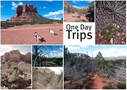 one day trips from phoenix