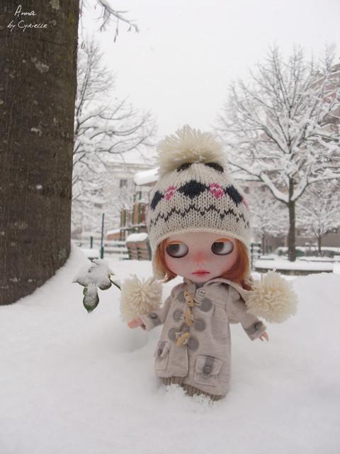 Anna (PDA2E) et Ninon (NP) Sous la neige!! P.5 - Page 3 5222911281_7794a6f5d4_z
