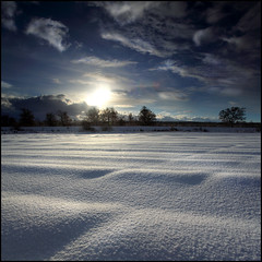 Potato Field (angus clyne) Tags: snow field scotland perthshire deep potato colorphotoaward