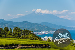 awesome point of view of Mount Fuji from Shizuoka Prefecture and Nihondaira (Yanis Ourabah) Tags: japan japanese culture tradition traditional tourism travel traveller tourist agency people landscape nature outdoor outdoors destination explore discover discovery explorer japon japonais asia asian mountain city street color colour night day summer spring temple shrine yanis ourabah nikon d750 50mm 14 70200 28 fuji fujisan fujiyama view awesome yama san panorama scenic trees tree bay water sea blue sky green tea field fields nihondaira park garden beautiful place