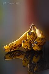 Bananas Still life(SJG style) (Steven J Gibbs) Tags: platinumheartaward dragondaggeraward