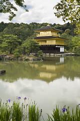 Kinkakuji (mctrent) Tags: park blue sky cloud color colour tree green nature japan forest garden countryside kyoto 京都 日本 wilderness 金閣寺 kinkaku