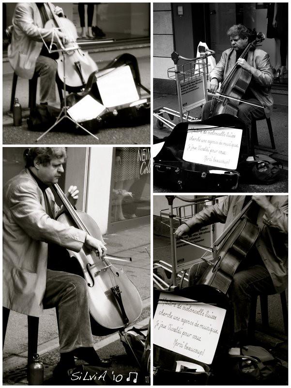 maestro di violoncello