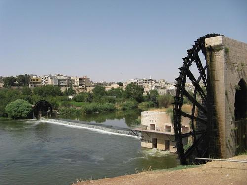 Noras em Hama, Síria