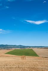Giochiamo a golf? (Jaxeetti) Tags: sky italy green grass countryside nikon campagna tuscany fields hay toscana greengrass campi fieno balesofhay balledifieno d80