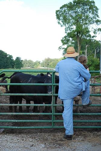 I love a farm. . .