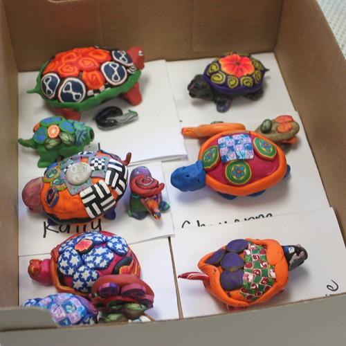 Student Turtle Rocks