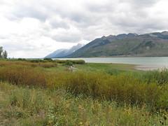The Tetons (Sonarsgs) Tags: travel montana oldfaithful roosevelt yellowstone wyoming grandtetons nationalparks