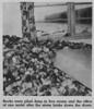 1662 Storm Rocks (kschwarz20) Tags: ocean city storm 1962 maryland history md kts ocmd oceancity