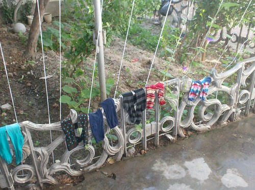 My socks after laundry hanging on the garden fence at my house in Dushanbe, Tajikistan
