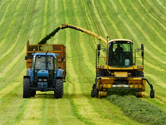 P1350995 Silage Harvesting (SomeBlokeTakingPhotos) Tags: summer tractor landscape countryside stripes derbyshire peakdistrict silage harvesting thegalaxy silageharvester mygearandme mygearandmepremium mygearandmebronze rememberthatmomentlevel4 rememberthatmomentlevel1 sunrays5 rememberthatmomentlevel2 rememberthatmomentlevel3