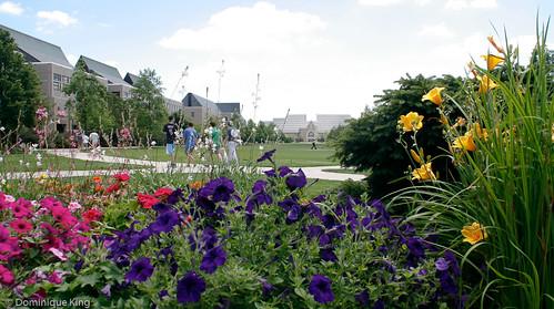 University of Notre Dame-8