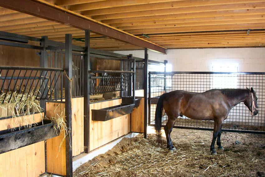 Inside Horse Barn horse stall gallery   shrock fabrication - elegant horse stalls