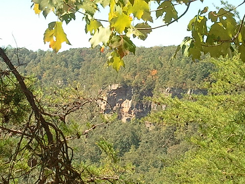 Pictures from yesterday's trek to Little River Canyon