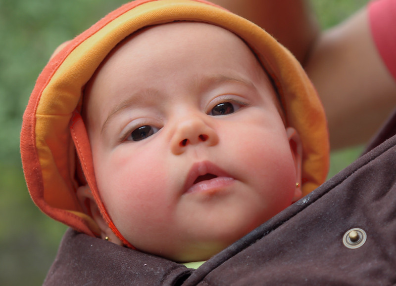 Marsupi-baby