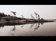 Daisy's Beach at Sunrise (Michael Mitchener) Tags: bear park morning camping trees bw lake chicken beach water sepia sunrise bay rocks georgianbay monotone chipmunk granite provincialpark killbear daisysbeach
