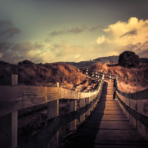 Cuba Gallery: Beach / New Zealand / landscape / wood / clouds / sky / people / pathway / photo / photography