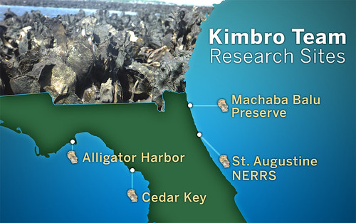 KImbro Team oyster reef sites