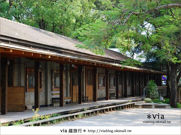 【彰化】彰化藝術高中~教室與森林結合的美麗校區