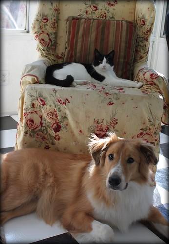 Reggie & Mabel