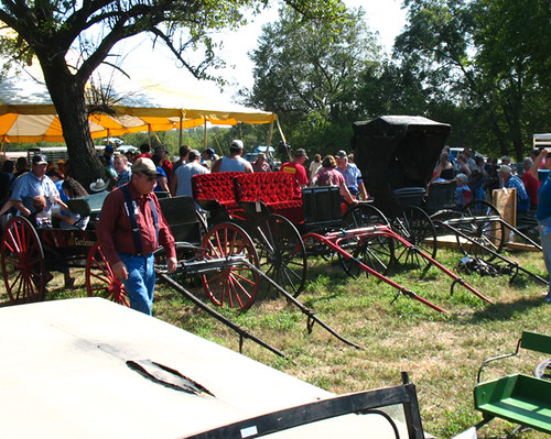 amish buggy auction
