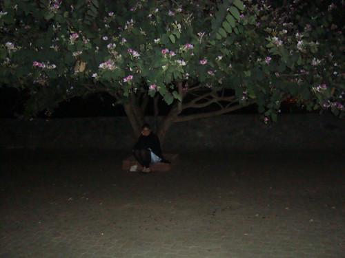 Pq Rizzo, de noite