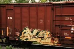 glue (great deku tree) Tags: railroad tree art train bench graffiti glue stock rail boxcar sg railfan freight rolling deku benching