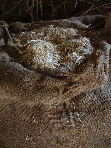 Rajasthan rice straw stored for livestock feed (Bhimpur Village)